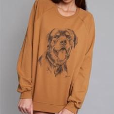 Rottweiler Sweater