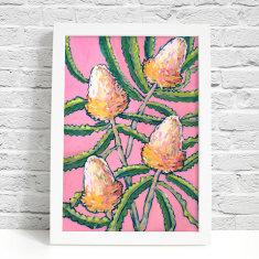 Pink Banksia Art Print