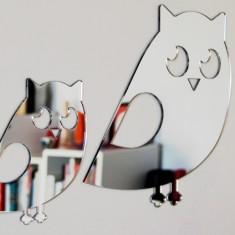 Shatterproof owl family
