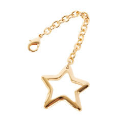 Star key ring in gold finish