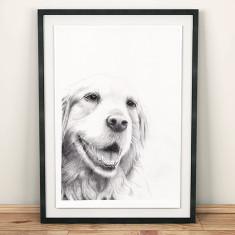 Bespoke hand-drawn pet portrait