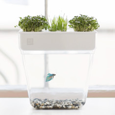 Water Garden Fish Tank And Planter 2.0