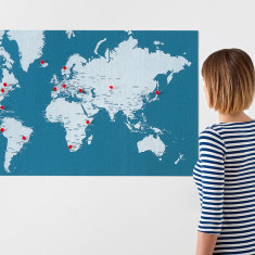 Palomar pin world wall map light blue