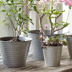 Sophie Conran for Burgon & Ball Ombre Plant Pots In Grey (Set of 5)