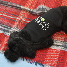 Personalised Sprout Pet Vest