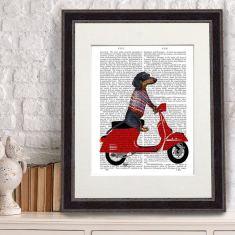 Dachshund on moped antiquarian book print