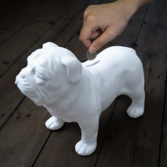Suck UK guard dog money box