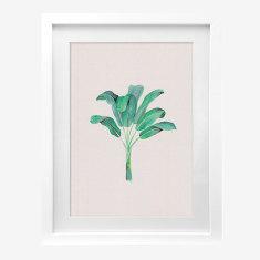 Framed Cass Deller 'Banana Palm' print