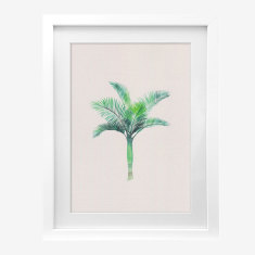 Framed Cass Deller 'Royal Palm' print
