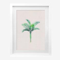 Framed Cass Deller 'Royal Palm' print