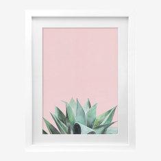Framed Cass Deller 'Desert Palm' print