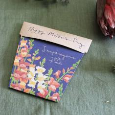 Mother's Day Gift of Seeds