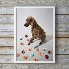 Indie Pup Art