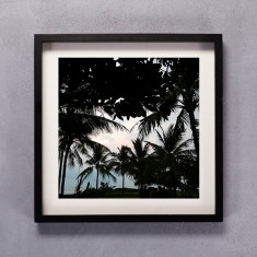 Palm Silhouette Photographic Print in Black & White