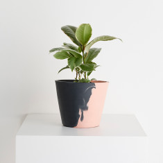Even-Steven Eco Resin Pot