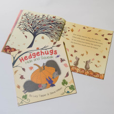 Hedgehugs Hide and Squeak Children's Book