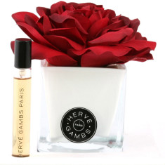 Herve Gambs diffuser with red rose in white cube