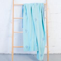 Blue & mint cactus blanket