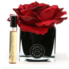 Herve Gambs diffuser with red rose in black cube