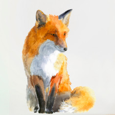 Fox Wall Sticker (Small)