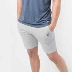Momentum Shorts