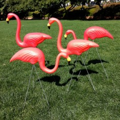 Flamingos forever garden accessories (set of 2)