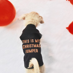 This Is My Christmas Jumper Pet Vest