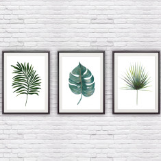 Palm and Monstera Leaf Set of 3 Prints