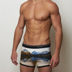 Men's boxer briefs in lake design
