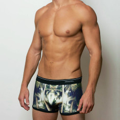 Men's boxer brief in shady palms