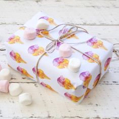 New Ice Cream wrapping paper pack (5 x sheets)