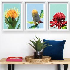 My native garden art prints (set of 3)