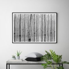 Scandinavian Forest Art Print