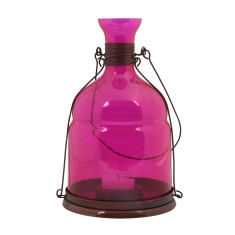 Indian lantern in fuchsia