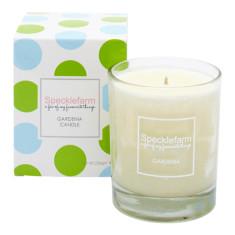 Candle in gardenia