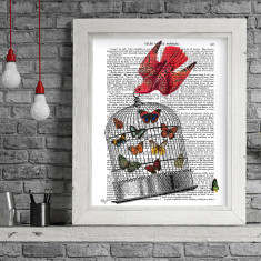 Flying birdcage book print
