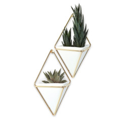 Umbra Trigg wall vessel in small (set of 2)