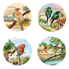 Coasters in birdlife (box of 20)