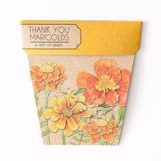 Thank You Marigolds Gift of Seeds