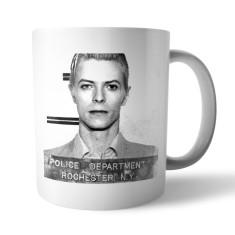 Mugshot mug: David Bowie