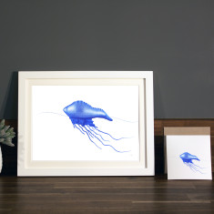 Bluebottle illustration Print