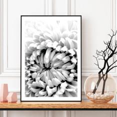 Monochrome flower art print