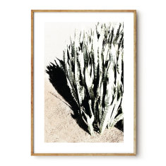 Desert Wash photographic wall art print