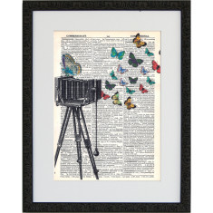 Lexicon butterfly catcher print