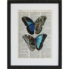 Lexicon butterfly ball print
