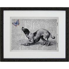 Lexicon papillon puppy print