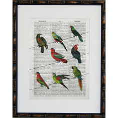 Lexicon jungle telegraph print