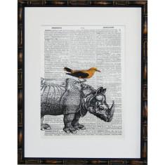 Lexicon rhino hornbill print