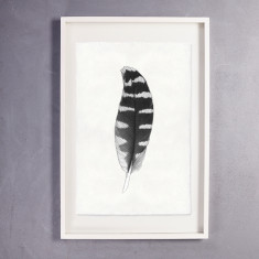 Feather Print Wall Art on Handmade Paper