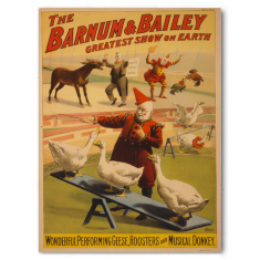 Vintage Barnum Bailey circus ready to hang canvas print